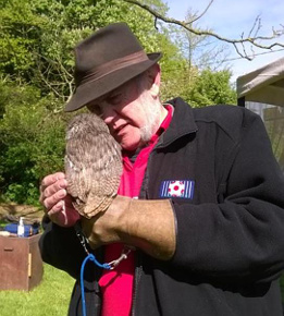 Slideshow: Phillip at the Birds of Prey display, Banwell. Phillip is holding Ballsey.