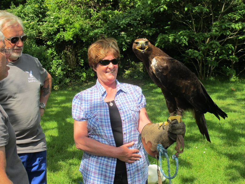 Jean holding an Eagle Saturday 14th June 2014