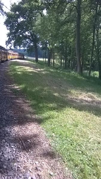 View from the rear coach of the Jungle Express