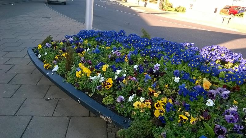 A boat of colour outside Weston-super-Mare Railway Station. Beautiful!