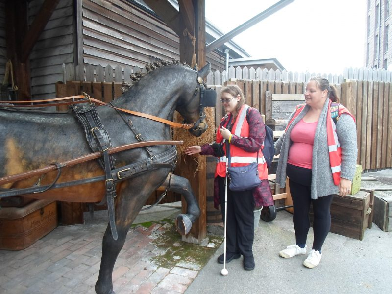 Kimby feeding the horse, Michelle looking puzzled!